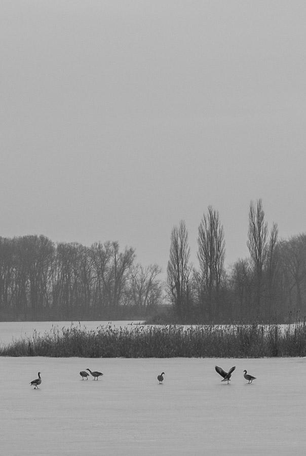 anna rusilko fotografia photography kruszwica kujawy kujawsko-pomorskie polska natura podróże travels poland landscape
