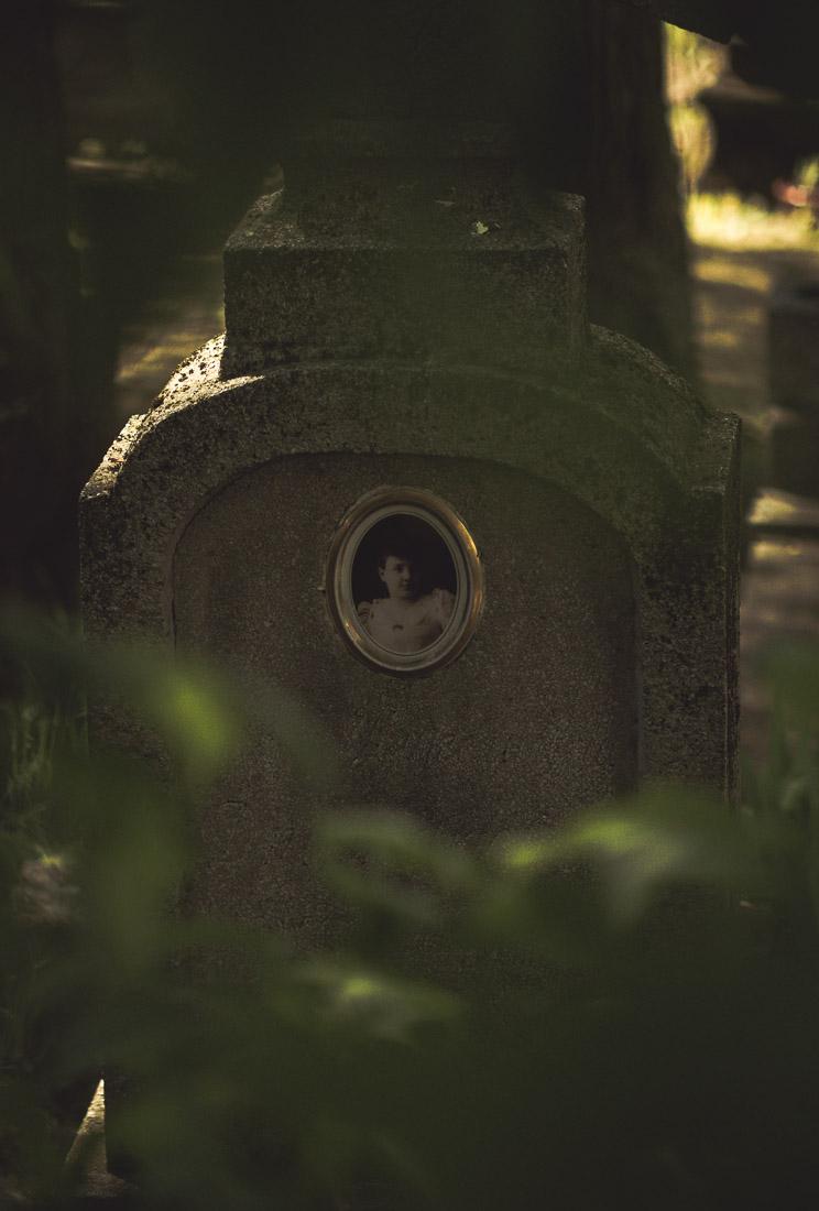 anna rusilko fotografia photography cmentarz cemetery toruń natura nature