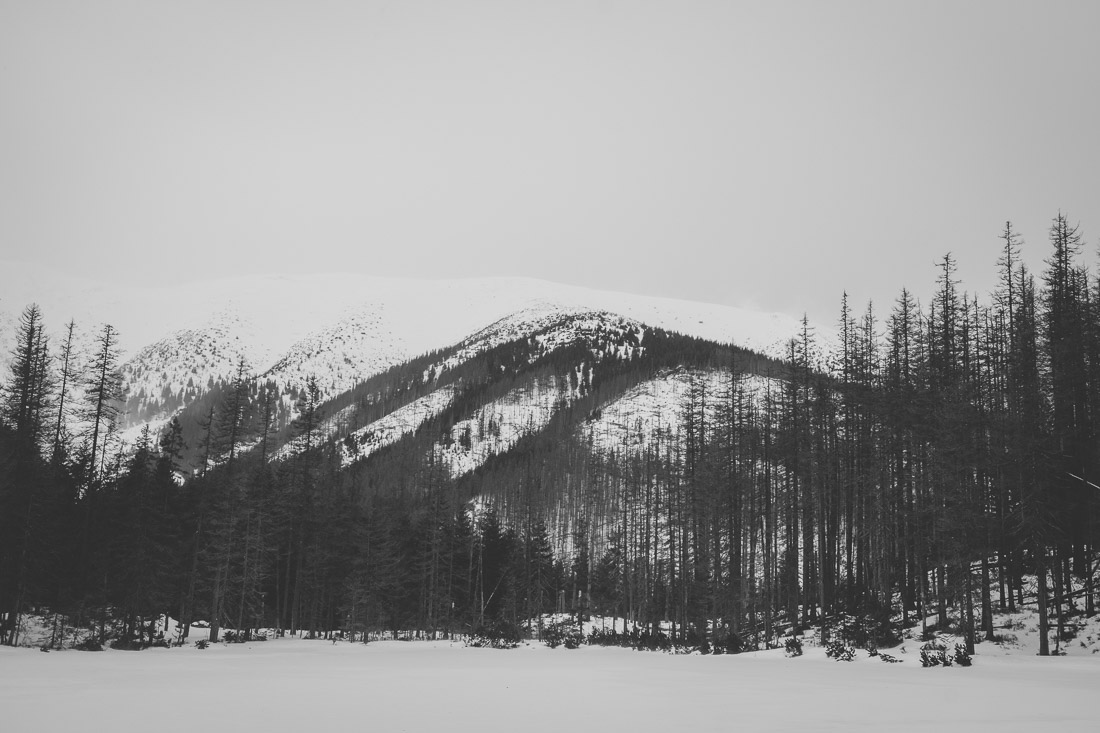 anna rusilko fotografia photography tatry tatras góry mountains polska poland dolina kościeliska zima winter