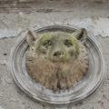 anna rusilko fotografia photography opuszczony pałac abandoned palace urbex bear