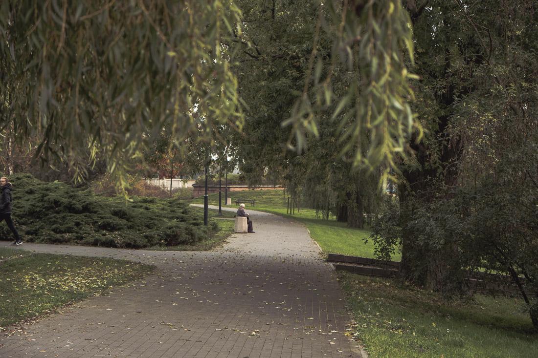 anna rusilko fotografia photography toruń jesień mgła starówka kujawsko-pomorskie