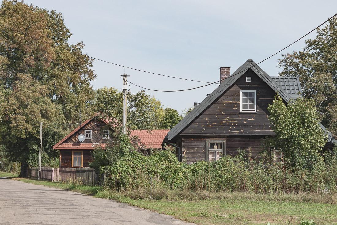anna rusiłko fotografia photography hajdukowszczyzna podlasie wieś village polska poland macro przyroda nature